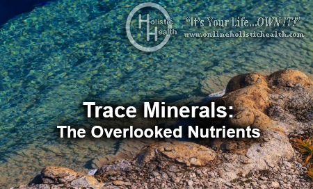 Trace Minerals the overlooked nutrients