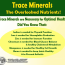 Trace Minerals:  The Overlooked Nutrients