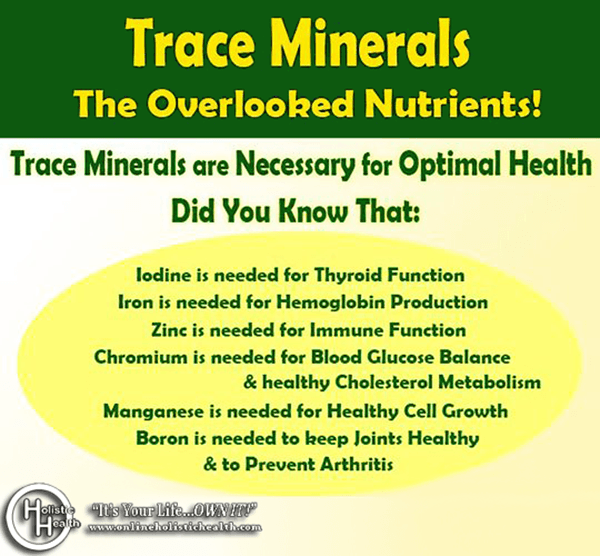Why you need Trace Minerals