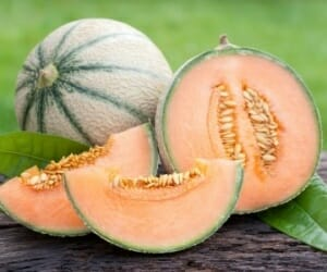 Could Cantaloupes Help Prevent Cancer?