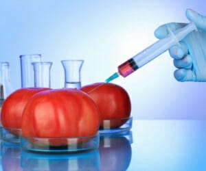 Monsanto's Mission To Pharmaceutically Enhance Foods