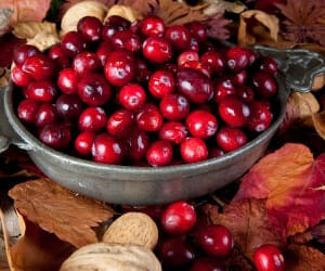 Cranberries Help More Than Urinary Tract Infections!