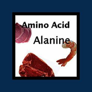 Amino Acid Alanine