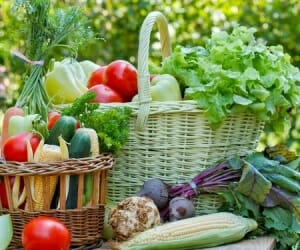 Thrive Market: Eating Organic Made Easy