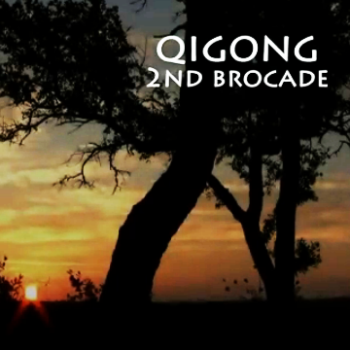 Brocade 2 – Open the Bow & Let the Arrow Fly