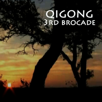 Brocade 3 – Separating Heaven & Earth