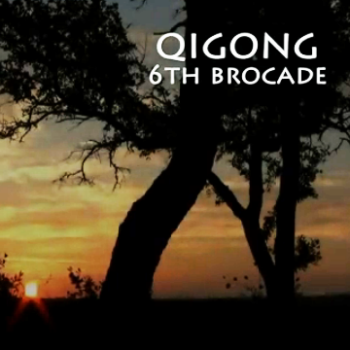 Brocade 6 – Reaching Down to Dissipate Disease