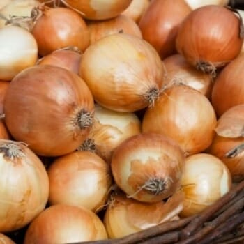Onions Help Prevent Cancer!