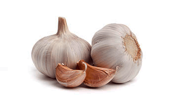 garlic online holistic health