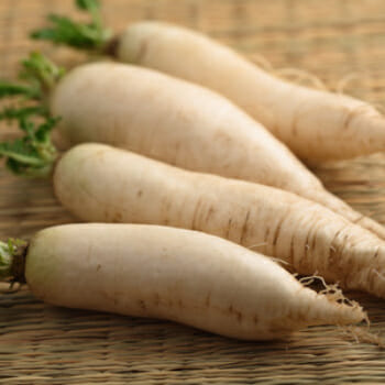 5 BIG Reasons to Include Daikon in Your Diet!