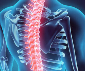 What is Chiropractic, Really online holistic health
