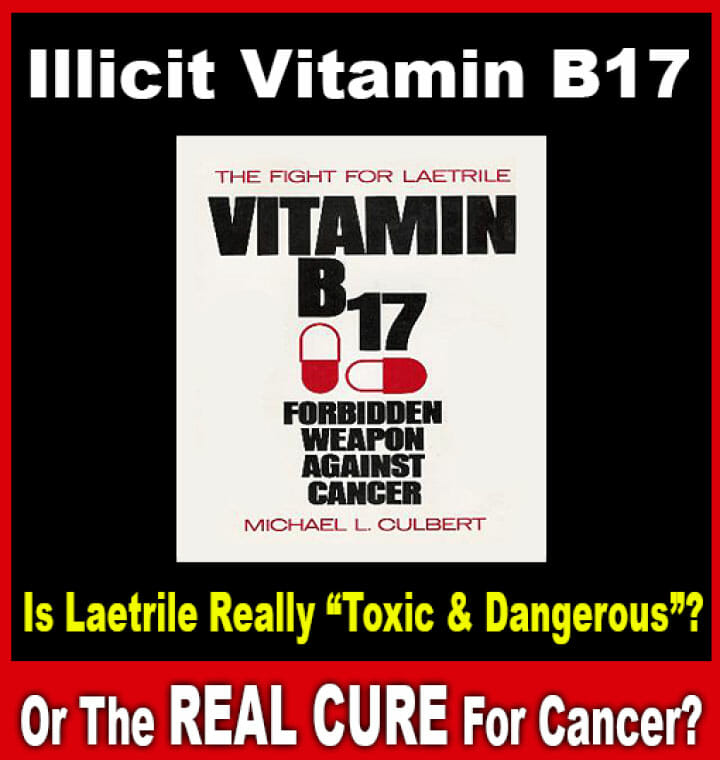 Is Laetrile Really Toxic & Dangerous online holistic health