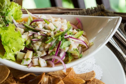 cevichi-online-holitic-health