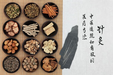 The Immune System from a Traditional Chinese Medicine Perspective