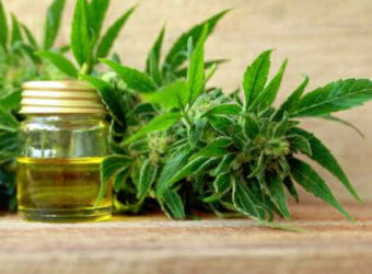What is CBD and Why Should You Use It?