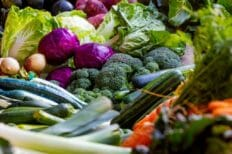 Why a Whole Food-Based Diet Can Treat & Prevent Many Health Conditions